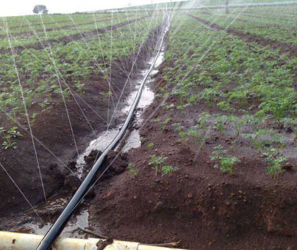灌溉微喷带